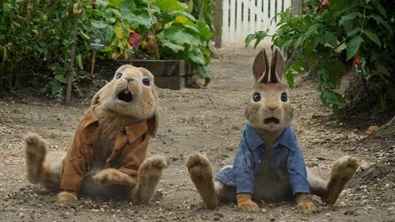 Когда точно выйдет фильм Кролик Питер 2 часть