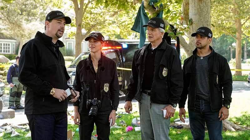Когда точно выйдет сериал Морская полиция: Спецотдел 19 сезон